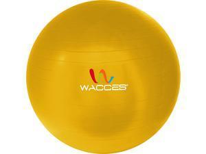 Wacces 65cm Black Fitness & Yoga Ball + Air Pump