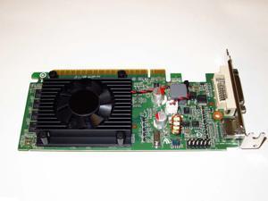 HP Compaq dc7600 dc7700 dc7800 dc7900 SFF nVIDIA GeForce 8400 GS 1GB PCI-Express 2.0 x16 DVI+HDMI Single Slot Low Profile Video Graphics Card