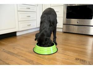 Iconic Pet - Color Splash Stripe Non-Skid Pet Bowl for Dog or Cat - Green - 16 oz - 2 cup