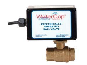 WATERCOP EHW24AJP01 Ball Valve, Electronic , 3/4 In FNPT