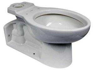 AMERICAN STANDARD 3703001.020 Toilet Bowl, Back Outlet, Elngtd, 161/2H