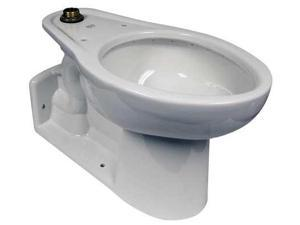 AMERICAN STANDARD 3695001.020 Toilet Bowl, Back Outlet, Elngtd, 161/2H