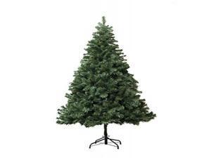 6' Douglas fir Christmas Tree with stand
