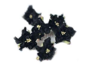 Vintage Gardenia 6/Pkg-Black