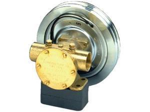 Johnson Pump 10-24577-98-1 F7B-50017 1 NPT WITH 12 VOLT