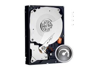 Western Digital 500 GB Caviar Black SATA 3 Gb/s 7200 RPM 32 MB Cache Bulk/OEM Desktop Hard Drive - WD5001AALS