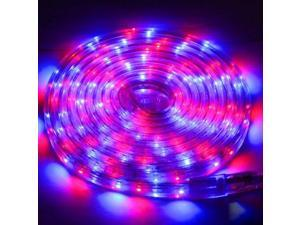 Casing Waterproof RGB LED 3528 SMD Rope Light for Christmas, 60 LED/M, Length: 3m