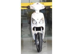 500 Watt EcoScoot Electric Scooter Moped Bicycle