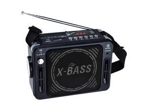 QFX Karaoke Multimedia Speaker with FM Radio- Black