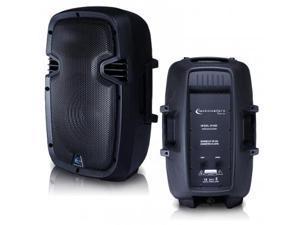 ABS Molded 10'' Two way Passive Loudspeaker