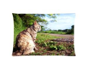 Cat On Field Pillowcases Custom Pillow Case Cushion Cover 18 X 18 Inch Two Sides