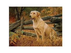 Mans Best Friend 500 Piece Puzzle by Outset Media