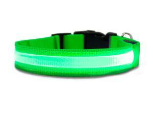 Furhaven Pet NAP Safety LED Light up Collar for Dogs (S) - Green