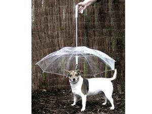 TinkSky Pet Dog Umbrella with Chain for Rainy Days