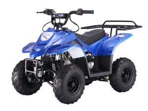 Tao Tao 110CC BoulderB1 ATV