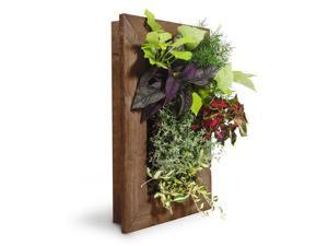"GroVert Living Wall Planter with Frame Kit  16"" x 24"""