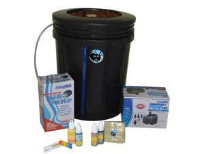 5-Gallon H2OtoGro® Hydroponic Bubbler Deep Water Culture Grow System ~ Grow herbs, flowers, fruits and vegetables all year round!