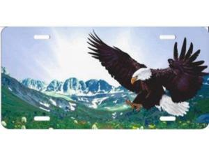 Eagle Landing Offset Airbrush License Plate Free Names on this Air Brush