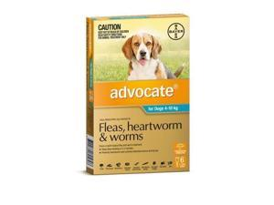 Advocate 6 Pack Medium Dogs  4-10kg