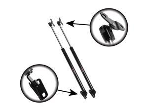 Qty (2) Lexus RX300 1999 To 2003 Liftgate, Tailgate, Hatch Lift Supports, Struts, Shocks  Priced L & R 6102 - 6102