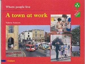Oxford Reading Tree: Stages 1-11: Fact Finders: Unit E: Where People Live: A Town at Work