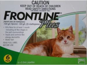 Frontline Plus for Cat and Kittens - 6 Month Supply