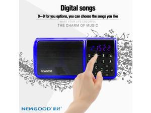 NEWGOOD Portable Mutifunctional Digital AM / FM/ SW Radio Media Speaker MP3 Music Player Support TF Card / USB Disk with LED Screen Display and Clock Function Music Player With LED Flashlight (blue)