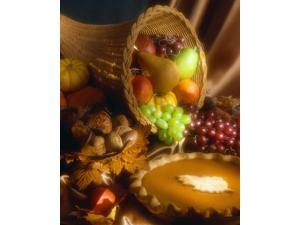 Thanksgiving Greeting Cards - Autumn Feast - AF100. Business Greeting Card with an Image of a Cornucopia and a Pumpkin Pie. Box Set has 25 Greeting Cards and 26 Pumpkin Orange Colored Envelopes.
