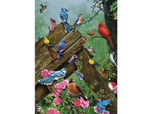 Outset Media Games OM51781 Birds of the Forest- 1000 Piece Puzzle