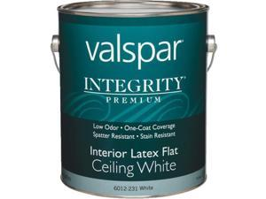 INT WHITE CEILING PAINT 004.6012231.007