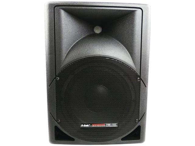 NADY PCS 10X P-CAB Series Full-Range 2-Way Powered Speaker with 10