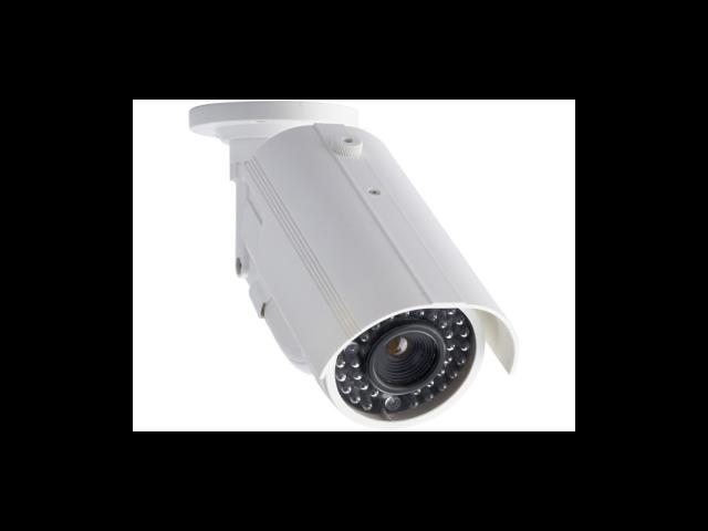 Lorex Imitation Outdoor Surveillance Camera