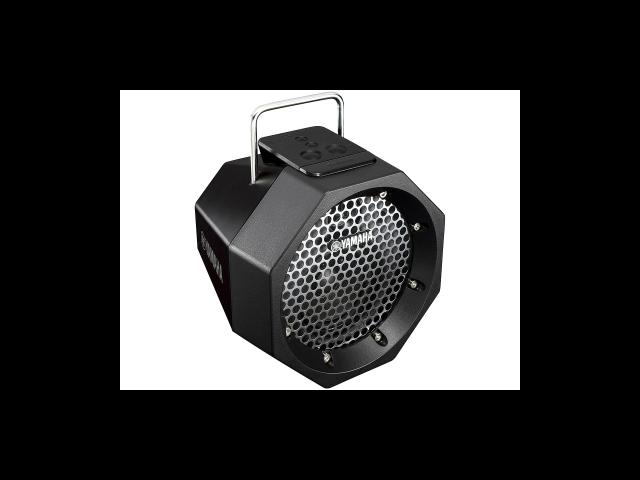 PDX-B11 Portable Bluetooth Speaker System (Black)