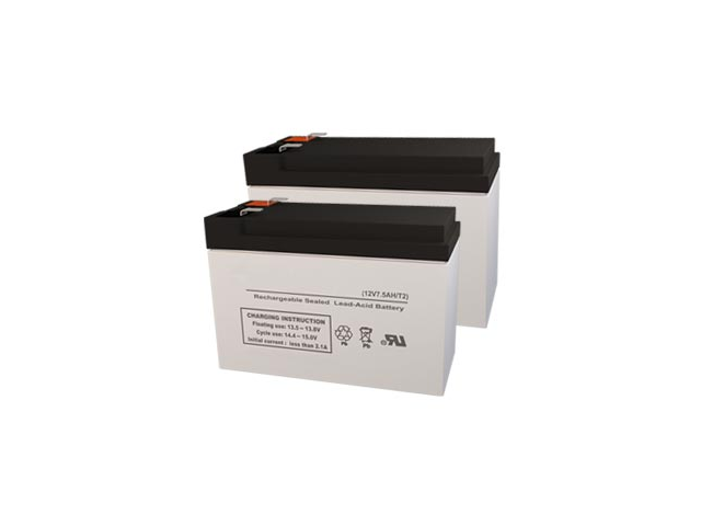 Alpha Technologies 700RM UPS Replacement Batteries - Pack of 2