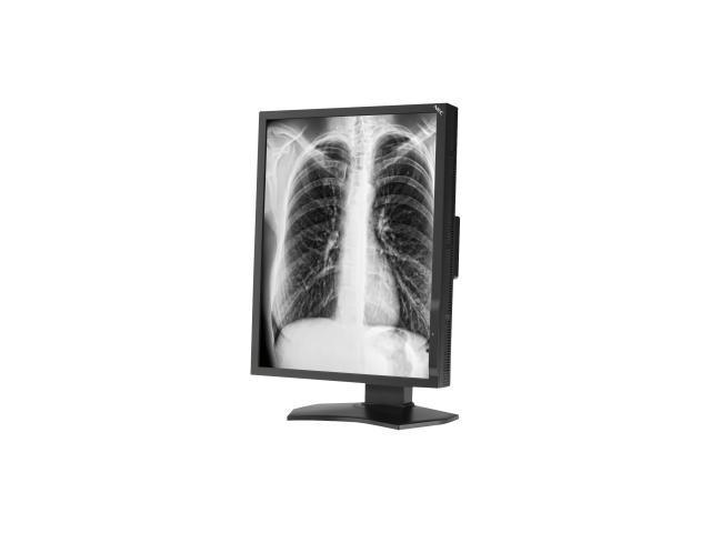 NEC Display MD211G3 21.3