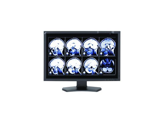 NEC Display MultiSync MD242C2 24