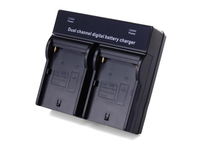 2x Rechargeable Battery + Charger For Sony NP-F970 NP-F960 CCD-TR Series BC396