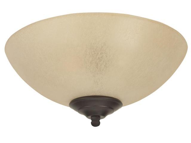 Tea-Stained Bowl Light Kit w CFL