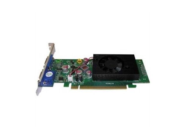New JATON Video-PX8400GS-LXi NVIDIA GeForce 8400 GS 256MB DDR2 PCI Express 2.0 x16 Low Profile Ready Video Card(SaveMart)