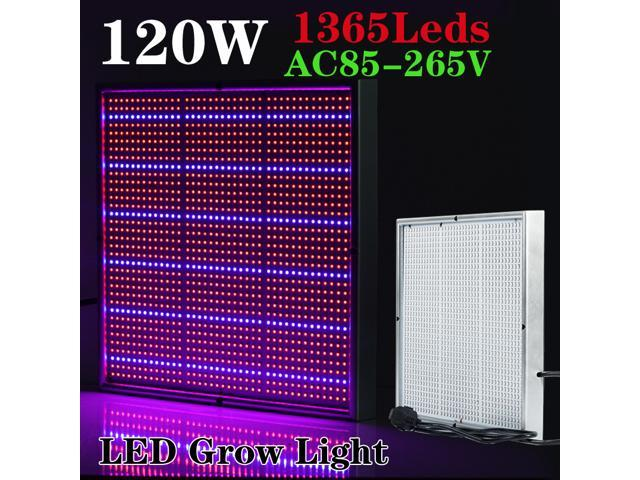 New Arrival 120W 1131Red:234Blue High Power LED Grow Light for Flowering Plant and Hydroponics System 85-265V