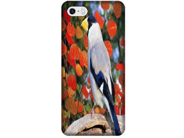 Phones Accessories Nice Birds Stand On The Trees Cute Design Cases For iPhone 4/4S # 7