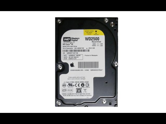 Western Digital 250GB SATA II 7200RPM Bulk/OEM Hard Drive WD2500JS