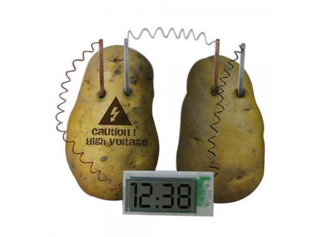 Magical Potatoes Induction Material Biomass Power Alarm Clock Innovative Ideas